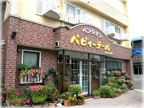 北海道函館市若松町30-16 ペンシション パピィーテール -01